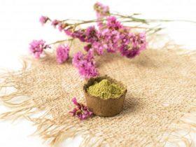 Tinte Vegetal - Qué es y cuáles son sus beneficios